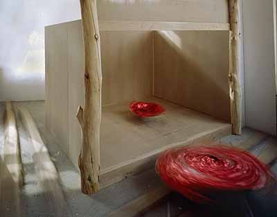 Daniel Schibli Tokonoma, 2005 C-print on aluminium, 125 x 160 cm © Daniel Schibli