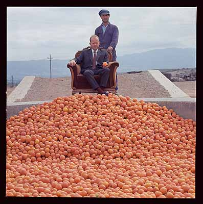 Lothar Wolleh1930 Berlin – London 1979O.T. [Chef mit der Orangenernte], Spanien um 1973Lamdaprint40,5 x 40,3 cmEstate Lothar Wolleh