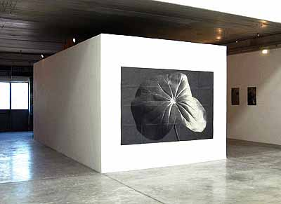 Sergio Zavattieri · installation view at Arturarte contemporanea