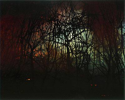 Sonja Braas, Forest Fire, 2006, 185 x 150 cm, C-Print, Edition 8 + 2 AP