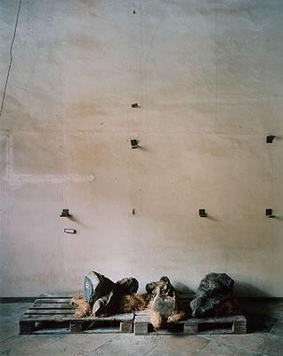 Erik Niedling STATUS #2, 2005, C-Print / Diasec
