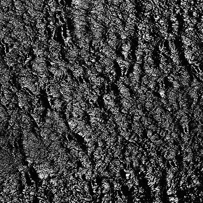 Detlef Orlopp, 19. August 1989, Silbergelatineprint, 44,7 x 45,0 cm (60,5 x 50,8 cm)