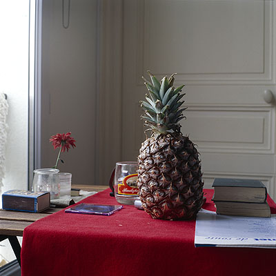 Peter Puklus Intimacy - No Title (Ananas), 2006