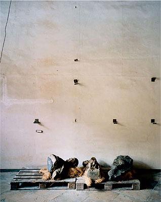 STATUS #02, 2005, C-Print / Diasec, 160 x 128,5 cm © Erik Niedling / VG Bild Kunst, Bonn