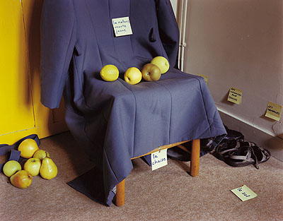 © ELINA BROTHERUS, DECISIVE DAYS, SUITES FRANÇAISES 2, LA NATURE MORTE JAUNE, 1999