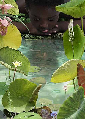 © Ruud van Empel / World 23, 2006 / cibachrome dibond plexiglass / 59 x 84 cm