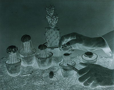Erik Niedling, FORMATION #03, 2007, C-Print / Diasec, 37 x 47 cm, 3 + 1 AP
