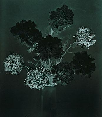 Erik Niedling, FORMATION #18, 2007, C-Print / Diasec, 142 x 123 cm, 3 + 1 AP