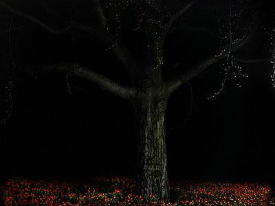 Baum + Tulpen 2007, 130 x 160 cm