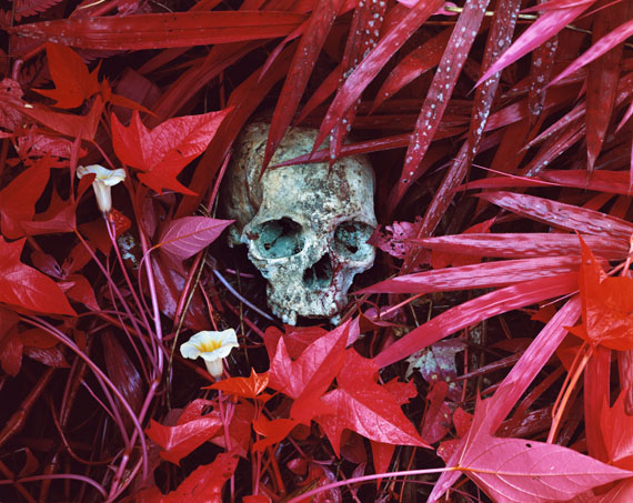 Richard Mosse: Aus der Serie: INFRA, Of Lilies and Remains (Busurungi & Hombo), 2012