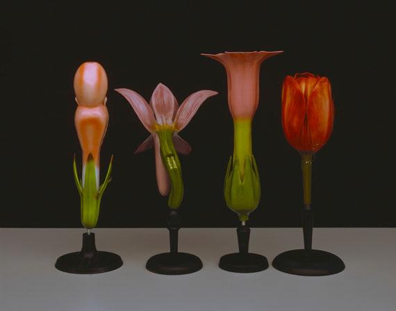 Hans Hansen: Pflanzenmodelle, C-Print, 119 x 94 cm