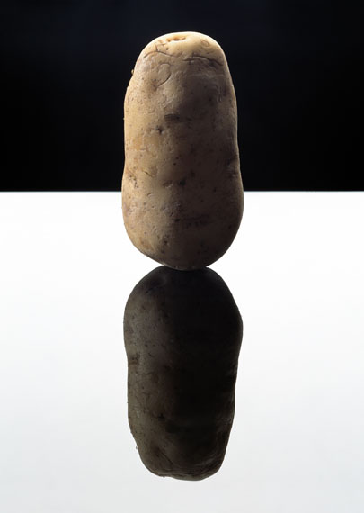 Potato, 2003 © Anuschka Blommers en Niels Schumm