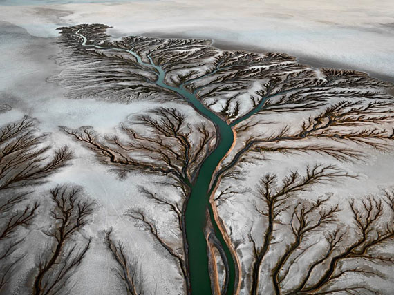Colorado River Delta #2, Near San Felipe, 2012