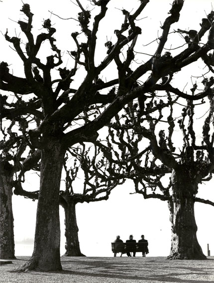Toni Schneiders