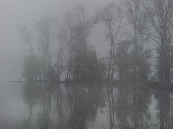 Michael Lange: Fluss #R8953, 2012 © Michael Lange 2014