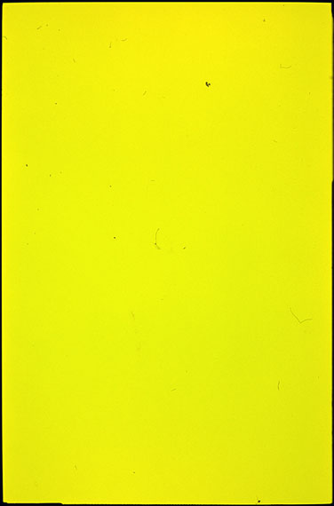 Je Ne Sais Quoi, 3612_4, 2014172 x 114 cmC-Print analogEdition: Unique© Martin MleckoCourtesy: grundemark nilsson gallery