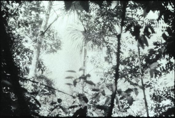 Luzia Simons: Humboldt ist niemals da gewesen (Landschaft 02), 2013Transfer printing, pigment on Dibond58,5 x 86 cm / Edition of 5 + 1 AP