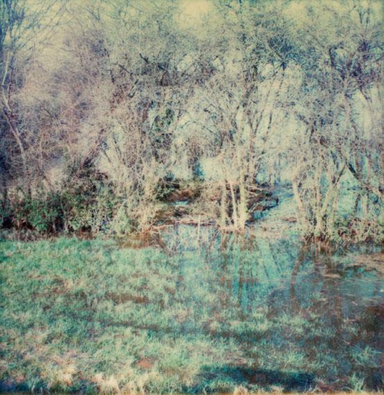 Neue Bilder über Landschaften