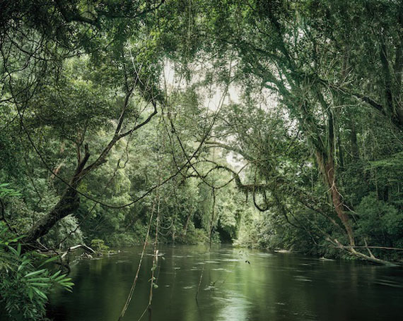 Primary Forest 01, waterway, Malaysia 11/2013, Reading the Landscape, 2013 © Olaf Otto Becker/Robert Morat Galerie