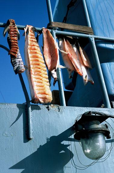 Trockenfisch, das Brot der Nordländer © Ulrike Ottinger