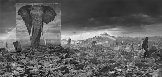 Nick Brandt: Wasteland with Elephant, 2015