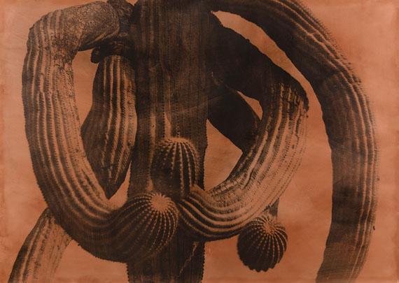 "Jungjin Lee: ""American Desert II"" 1994, Photo Emulsion, Water Color on BFK Paper, 106,7 x 152,4 cm © Jungjin Lee"