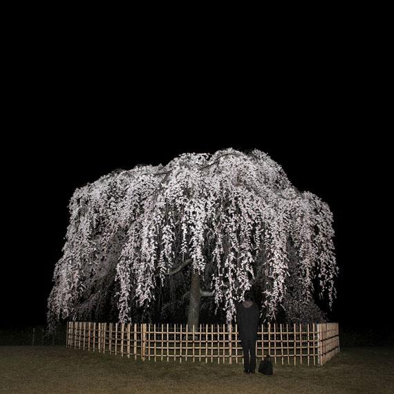 Sascha Weidner, Night Call II, 2013