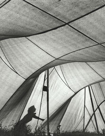 Ludwig Windstosser: Zelt im Gegenlicht, 1950er Jahre, Vintage, Silbergelatineabzug, 29,2 x 22,7 cm Courtesy Grisebach GmbH