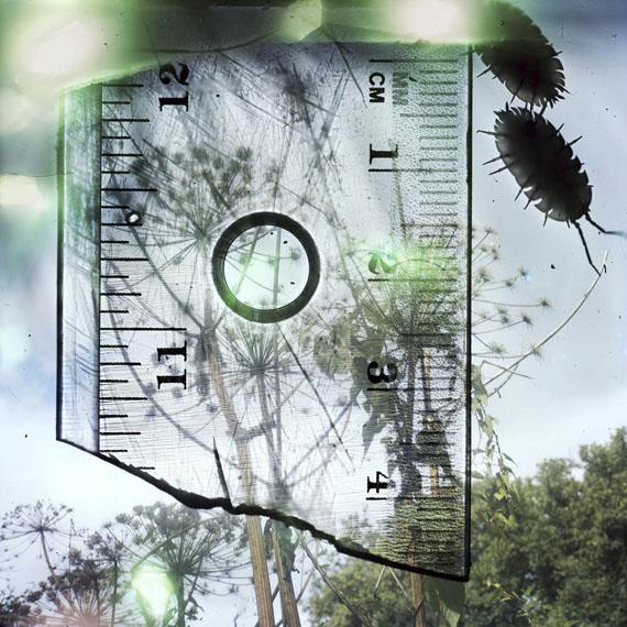 "Stephen Gill, aus der Serie: ""Talking to Ants"", 2009-2013/2013, Archival pigment print© Stephen Gill / Courtesy Christophe Guye Galerie, Zürich"