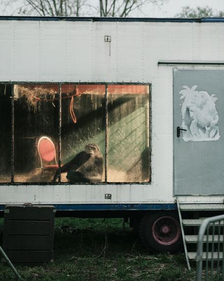 """© Jakob Schnetz: o.T. (aus der Serie """"Robby"""")"""