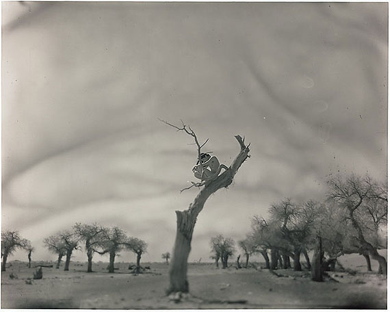 Besieged, (2009) Silver Gelatin Print. 33cm x 41cm – Edition of 10; 98cm x 124.5cm – Edition of 5