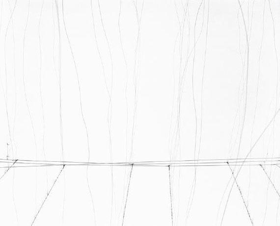Frank Darius, Hopfen I, 2011, 70 x 82 cm,