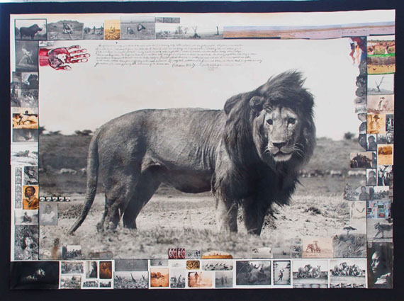 Peter BeardSerengeti Lion, 1976Silver Gelatin Print - variously inscribed with ink and collage - 176.5 x 128.5cm176.5 x 128.5cm© Peter Beard, courtesy of Michael Hoppen Gallery