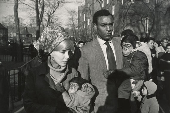 Central Park Zoo, New York 1967