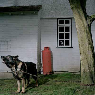 Darmstädter Tage der Fotografie 2006: Selbstsicht - der Schritt ins Bild.