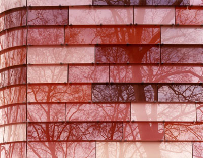 See what you See, 2007, C-print, Diasec (silicon mounted between Plexiglas and Reynobond), 180 x 235 cm. // Ed. 6