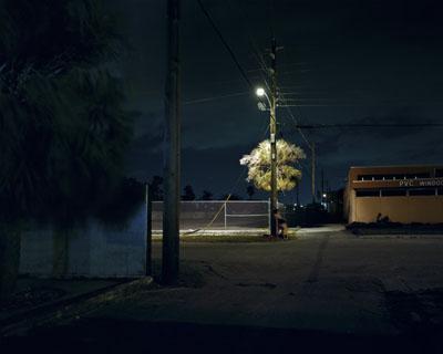 Nocturnal # 1548x 60 inch edition of 620x25 inch edition of 9 Cromogenic prints on Kodak Ultra Endura paper