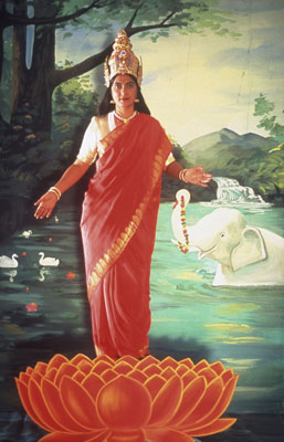 Pushpamala N.Lakshmi (from