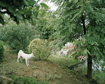 Laurence Bonvin: Ulus, Istanbul, 2005, aus der Serie: On the Edges of Paradise, 2005/06© Laurence Bonvin