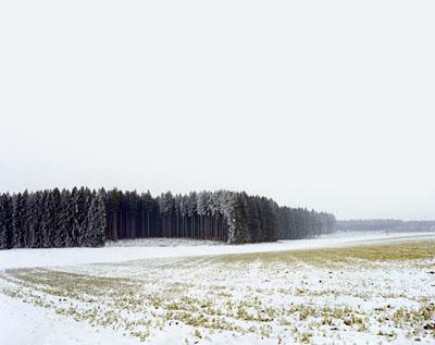 Olaf Otto Becker, Wald bei Moorenweiß, 2003, 30x40cm, € 285,-