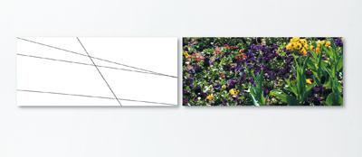 Gegenwelt, Stuttgart 2009/9, 2-teilig je 70cm x 30cm, Lambda Laserchrome Vergrößerung auf Alu-Dibond.