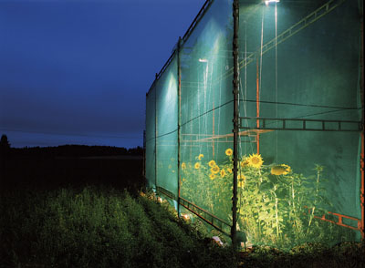 Restoration, Untitled (3), 2000, C-print / Ilfochrome  mounted on whiteglass and polystyrol, 100 x 136 cm, Edition of 6 +2AP.