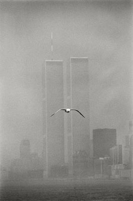 © Louis Stettner 'Seagull, Twin Towers', New York, 1979