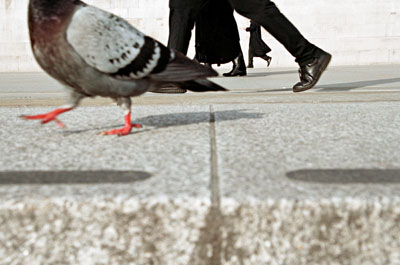 ©Matt Stuart, Trafalgar Square, London, 2006
