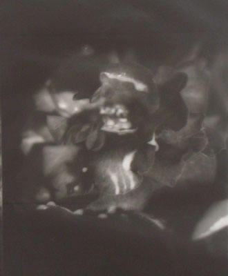 Fiona PardingtonRose Red Meets Prince CharmingSilver Gelatin Print430 x 560 mm1994