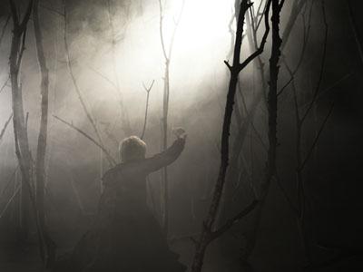 Achtung! Waldarbeit! Der Wald im Spiegel studentischer Fotografie