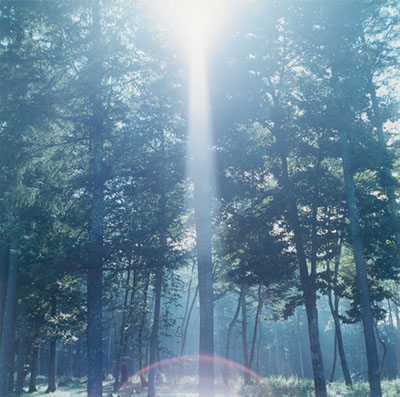 "Rinko Kawauchi, Untitled, from the series of ""Illuminance"", 2009, © Rinko Kawauchi, courtesy of the artist and Galerie Priska Pasquer, Cologne"