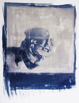 ©  Andrea Ebener, Devon Rex II, 2011, 70 x 100cm, Unikat, Cyanotype auf Torchon Aquarellpapier