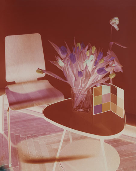 © Thomas Freiler, Case Studies, Tulpen, 2011, Kodak Professional Paper 30x24 cm