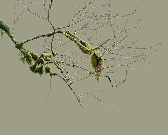 Sabine Schründer: aus: intrude (into) | 2007 | Pigmentdruck auf Dibond, gerahmt | 150x185 cm